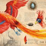 Harry Potter et la Chambre des Secrets par Jim Kay