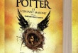 Aide à la traduction pour Harry Potter and the Cursed Child