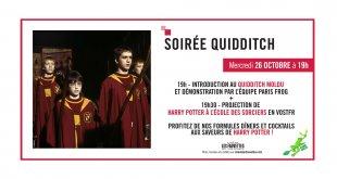 fauvettes-cinema-quidditch