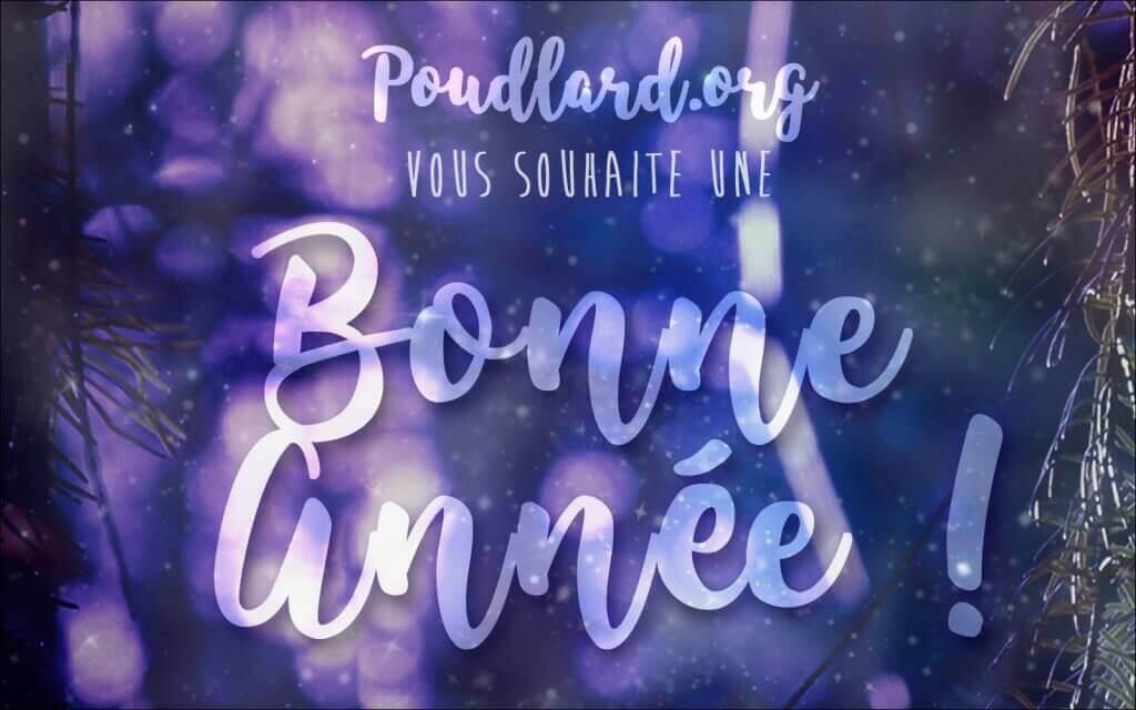 Poudlard.org vous souhaite une bonne année !