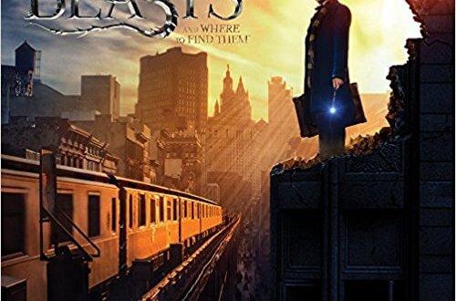 Calendriers Les Animaux fantastiques et Harry Potter en pré-vente