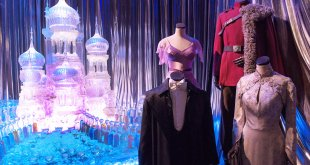 Harry Potter Yule Ball Costumes
