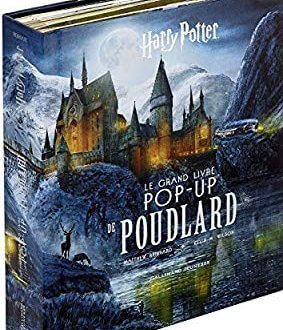 Poudlard disponible en 3D