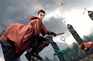 Quidditch sorcier ou Quidditch moldu ?