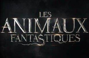 Les Animaux fantastiques 3 : sa sortie reportée à l'été 2022